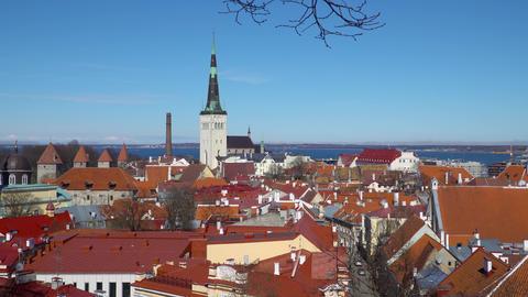 Tallinn skyline, Estonia. Aerial view of Estonia. Austria. Tallinn old town Footage