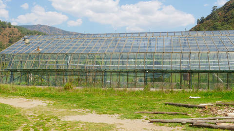 Greenhouse garden, exterior Footage