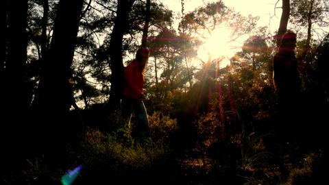 silhouette people walking trekking nature at sunset Footage