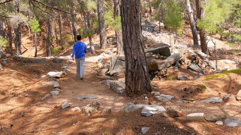 tourist man walking trekking historical lycian way, lycia road, turkey Footage