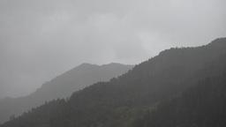 Heavy rain in the Serra do Gerês National Park Footage