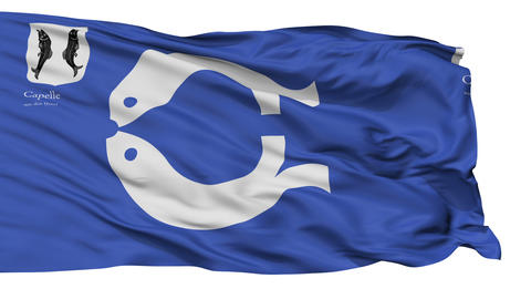 Isolated Capelle aan den IJssel city flag, Netherlands Animation