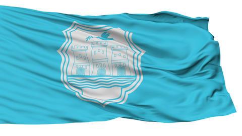 Isolated Novi Sad city flag, Serbia Animation