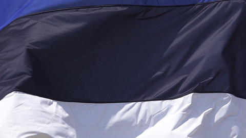 Estonia Flag Waving in the Wind, Slow Motion Live Action