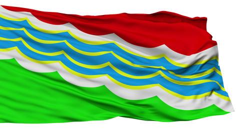 Isolated Tiraspol city flag, Transnistria Animation