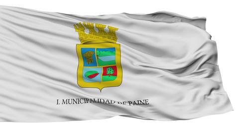 Isolated Paine city flag, Chile Animation
