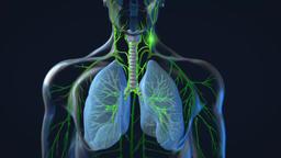Influenza virus. Virus causes of human, avian and swine flu disease Footage