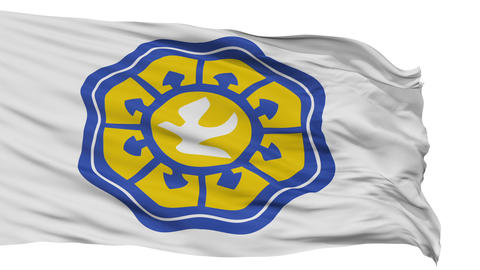 Isolated Nicosia city flag, Cyprus Animation