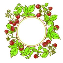 raspberry branch vector frame ベクター