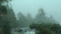 Hurricane, strong wind and rain reeling of palm trees, 4K, part 2 Footage