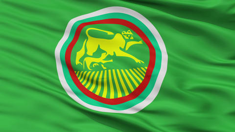 Closeup Stara Zagora city flag, Bulgaria Animation
