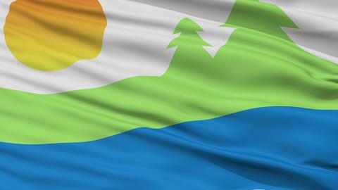 Closeup Kawartha Lakes city flag, Canada Animation
