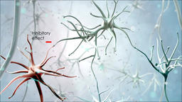 Journey through a neuron cell network inside the brain Footage