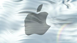 APPLE flag waving on sun. Seamless loop with highly detailed fabric texture Animation