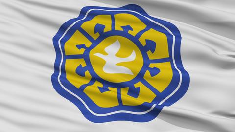 Closeup Nicosia city flag, Cyprus Animation
