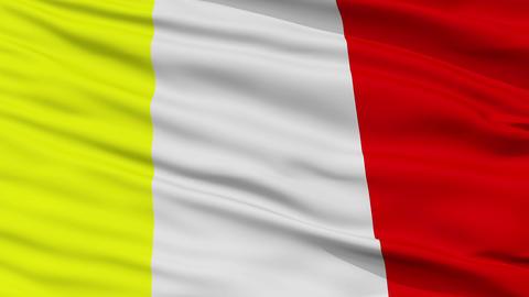 Closeup Benevento city flag, Italy Animation