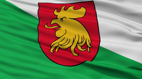 Closeup Madona city flag, Latvia Animation
