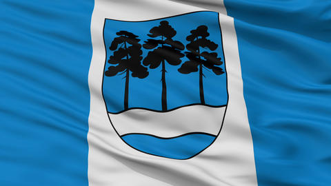 Closeup Ogre city flag, Latvia Animation