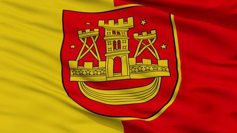 Closeup Klaipeda city flag, Lithuania Animation