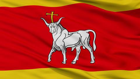 Closeup LTU Kaunas city flag, Lithuania Animation