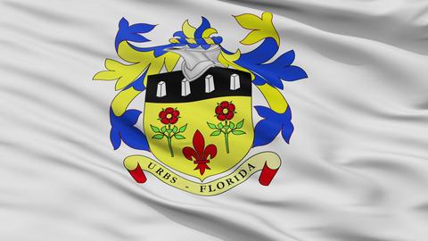 Closeup Quatre Bornes city flag, Mauritius Animation