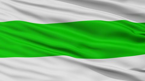 Closeup Codru city flag, Moldova Animation