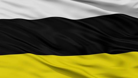 Closeup Tarnowskie Gory city flag, Poland Animation