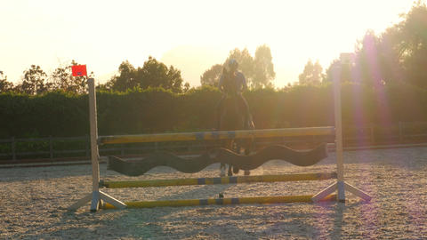 Horse jumping hurdle at sunset Footage