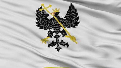 Closeup Alex K Chernihiv prapor city flag, Ukraine Animation