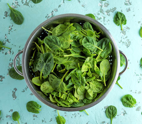 green spinach leaves in an iron colander フォト