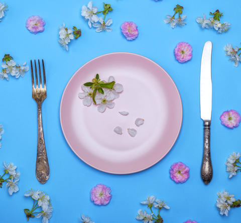 pink ceramic plate and a vintage knife with a fork フォト