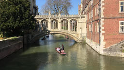 Punting on the River Cam by the Bridge of Sighs Cambridge UK GIF