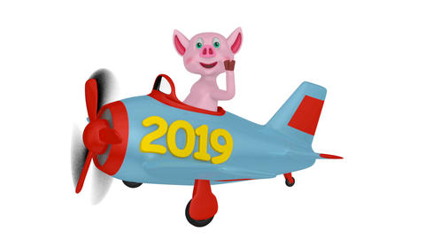 Piglet in airplane 2019 03 Videos animados