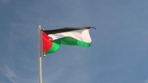 Palestine flag Footage