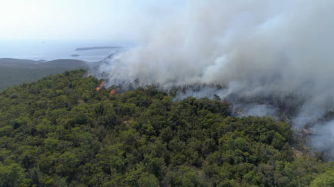 aerial view of burning bushes in the hills Footage