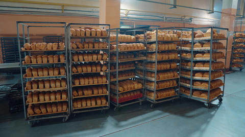 baking bread, bakery products, trays with hot bread stand near the stove. fresh Footage