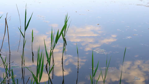 Reflection of clouds in water Footage