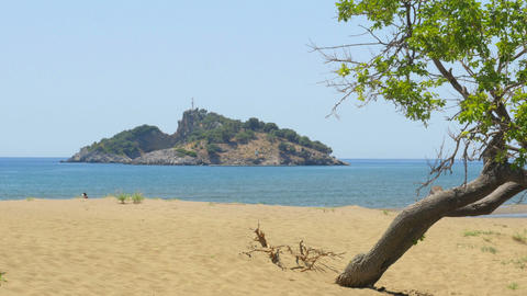lonely single tree, boat trip, iztuzu turtle beach, dalyan, turkey Footage