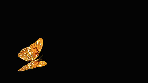 Butterfly OrangeRed V3 NOblurNOparticle Animation