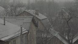 Snow (slow Motion) Color