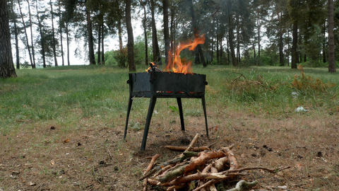 brazier barbecue grill in forest 4k Footage
