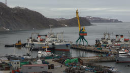 Harbor tugboats pushing freezing fishing trawlers helping to enter seaport Footage