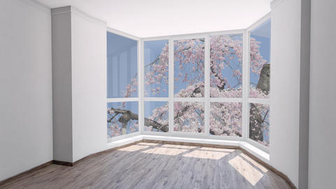 Empty house for rent with pink sakura bloom outside the window 영상물