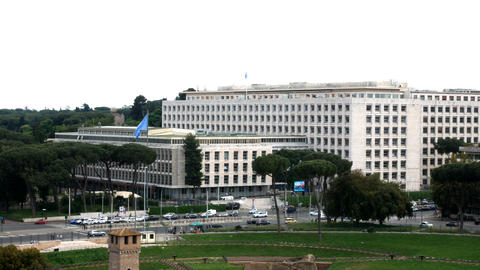 view on the building of the Fao, with blue flag Fao Footage