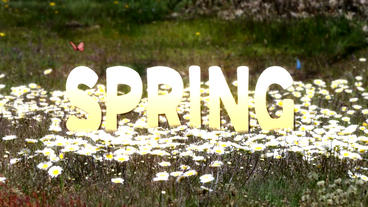 SPRING TEXT After Effectsテンプレート
