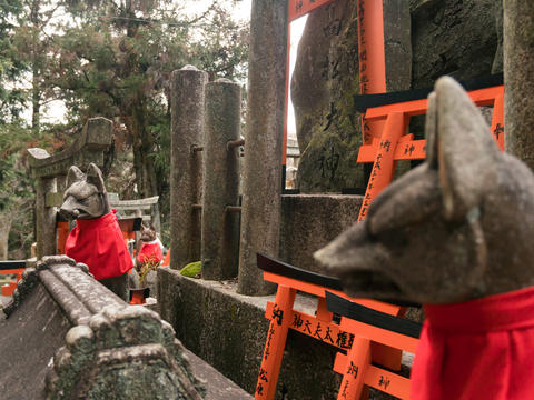 Foxes stone statue at Fushimi Inari Shrine in Japan Photo