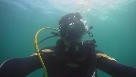 Diver under water ビデオ