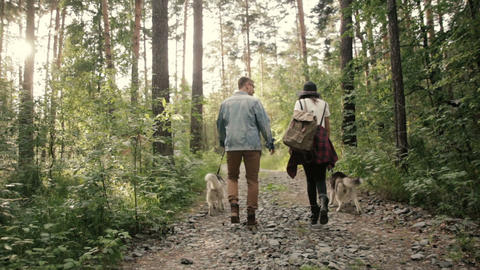 Couple walks in woods with dogs and looks around Footage