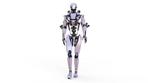 Robot Walk 1