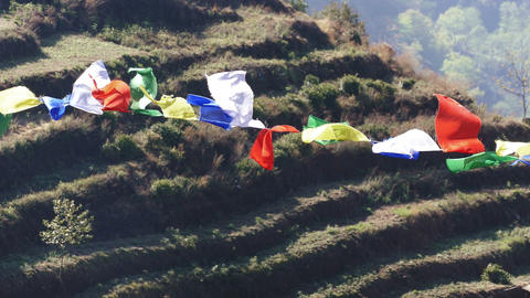 Prayer Buddhist Multicolored Flags Agriculture Terraces Nepal 4K Footage